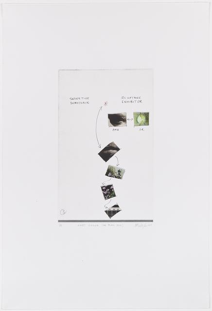 Mikhael Subotzky, 'East Coker (or Black Bile)', 2019, David Krut Projects