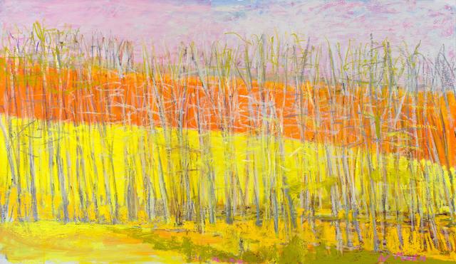 , 'TRANSLUCENT,' 2013, Jerald Melberg Gallery
