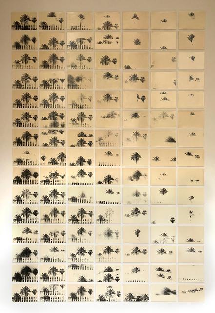 , 'A Palm Tree is a Palm Tree is a Palm Tree (Deconstructing a Mediterranean Fantasy),' 2018, Howard Greenberg Gallery