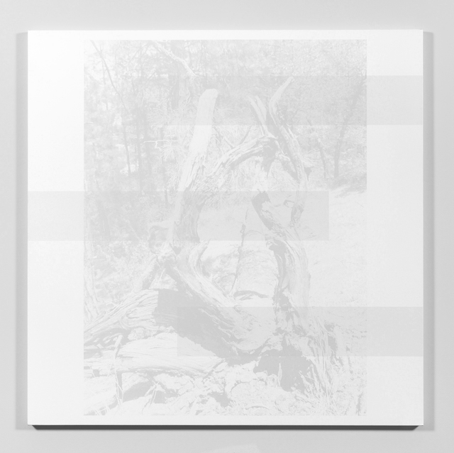 , 'Maseraine,' 2013, James Harris Gallery