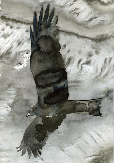 , 'Hawk,' 2015, Galerie Donald Browne