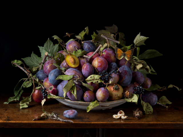 , 'Italian Plums, After GG,' 2015, Robert Klein Gallery