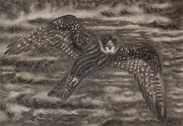 Jeff Olsson, 'Funny Bird', 2014, Galleri Magnus Karlsson