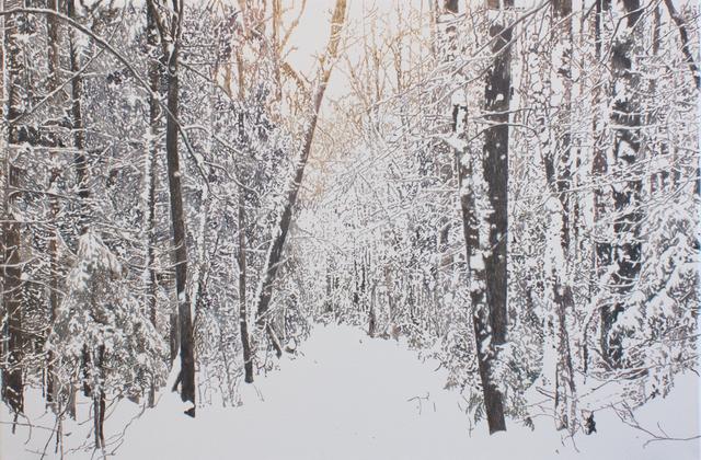 , 'Chemin de neige (Saint-Gilles, Québec),' 2019, Galerie D'Este