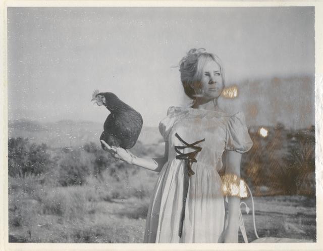 , 'Victorian Falcon,' 2016, Instantdreams