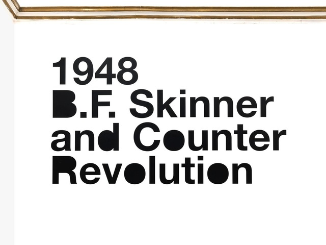 , '1948 B.F. Skinner and Counter Revolution,' 2012, Alfonso Artiaco