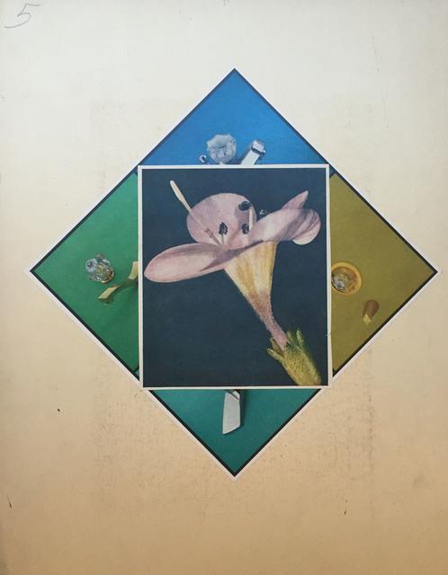 , 'Flora Quadrant ,' 2015, Robert Dimin
