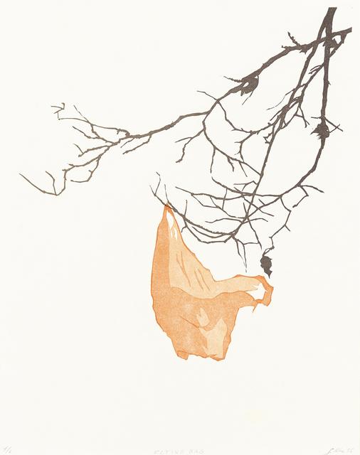 , 'Flying Bag,' 2016, Aspinwall Editions