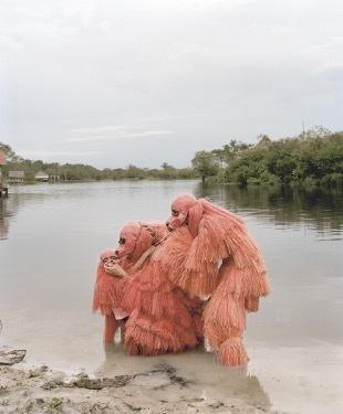, 'La danse des ouakaris chauves,' 2014, Art Bärtschi & Cie | Geneva, Switzerland