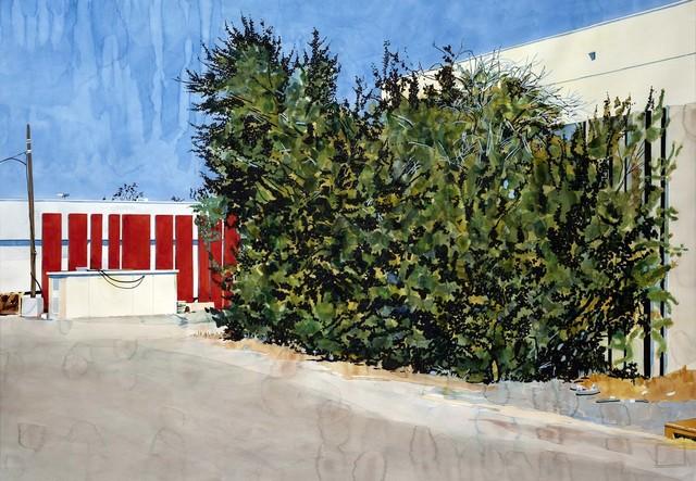 , '0994_0518 _burningbush,' 2018, Galerie Xippas