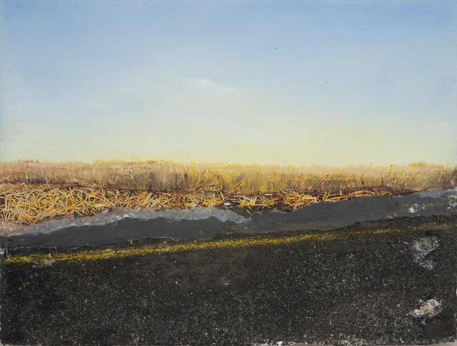 , 'Field,' 2012, Rosenfeld Gallery