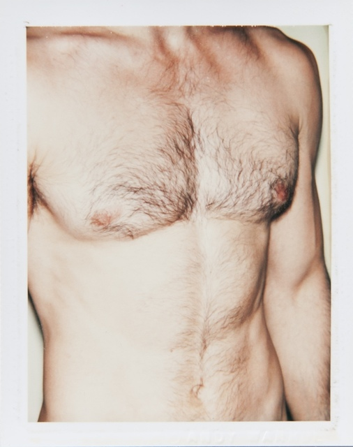 , 'Torso,' 1977, Hedges Projects