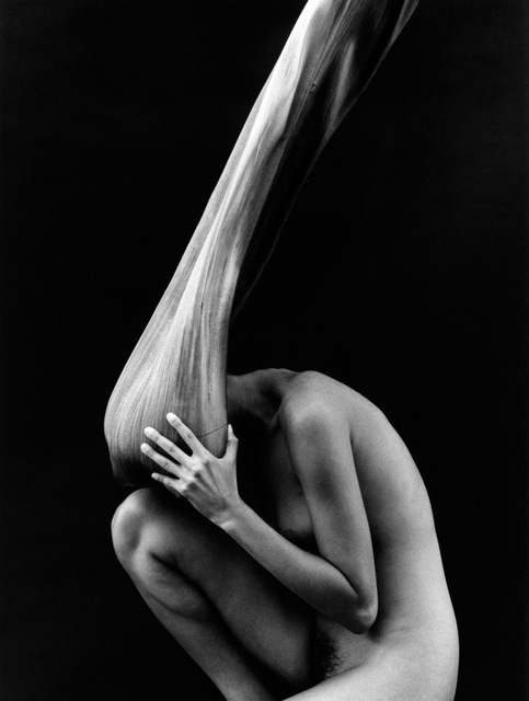 , 'Nude & Palm, Los Angeles, CA,' 2009, Timeless Gallery