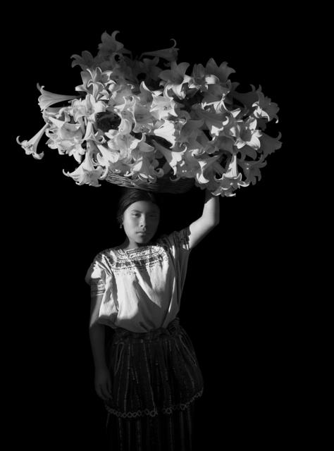 , 'Canasta de luz,' 1989, Patricia Conde Galería