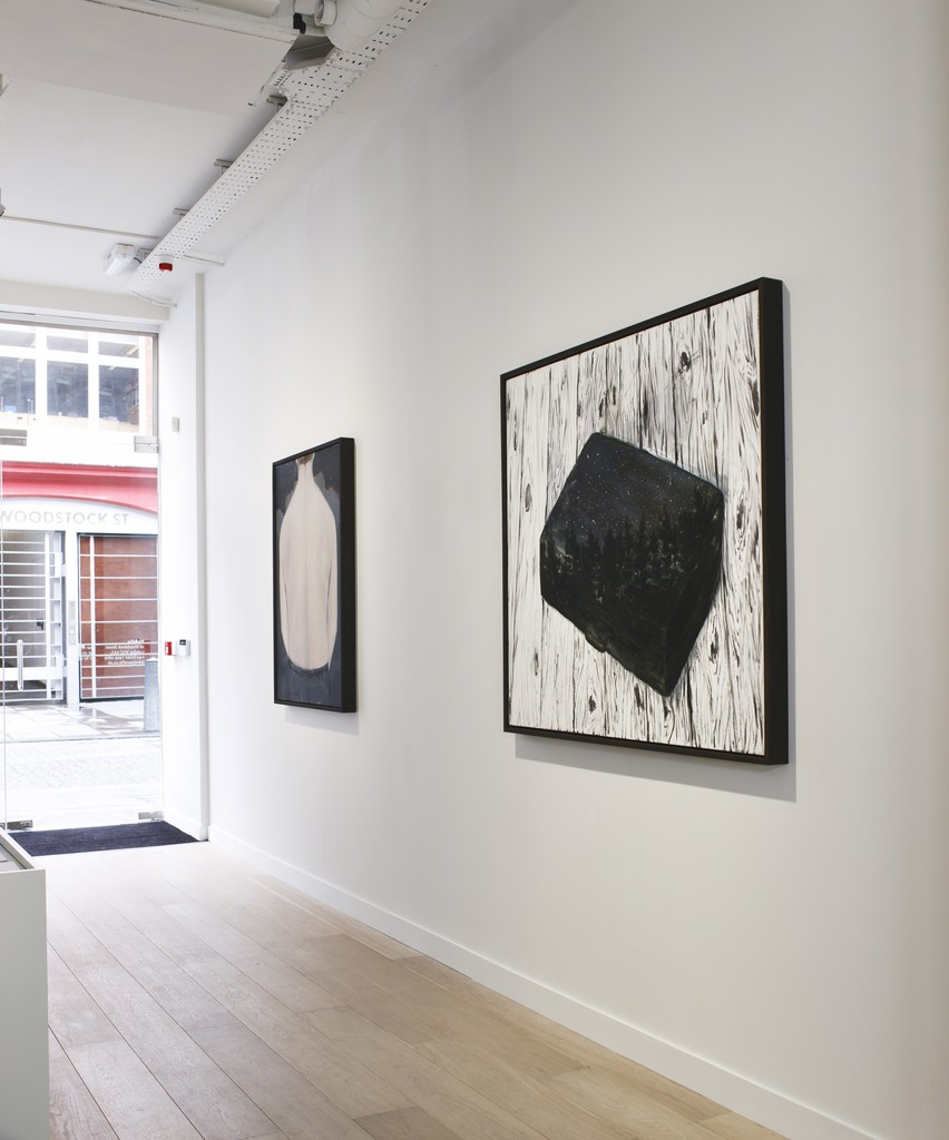 Enrique Martínez Celaya: The Seaman's Crop, Installation view, Parafin, London, 2014. Photo: Peter Mallet