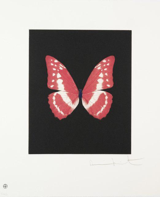 , 'Eternal Rest, Butterfly Portrait,' 2009, Lawrence Alkin Gallery