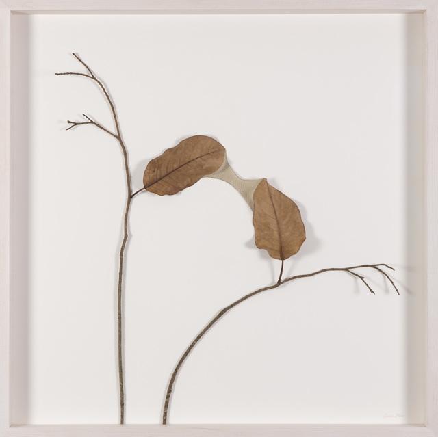 Susanna Bauer, 'Bridge', 2014, Le Salon Vert