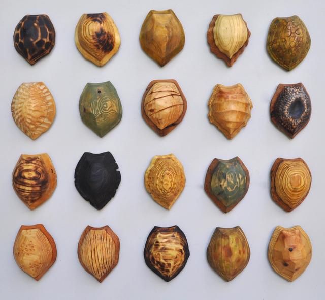 , '20 Terrapin Shells ,' 2017, Spalding Nix Fine Art