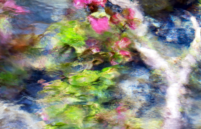 Larry Garmezy, 'My Giverny #2 - Abstract / impressionist water photography, waterscape, floral, natural abstraction, Rocky Mountains, in green, pink, and blue', 2019, Archway Gallery