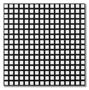 , 'Trames de 256 carrés réguliers,' 1972, Dan Galeria