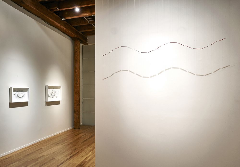 """Installation view of """"Expanding the Line"""" at Cecilia de Torres, Ltd., New York, 2017"""