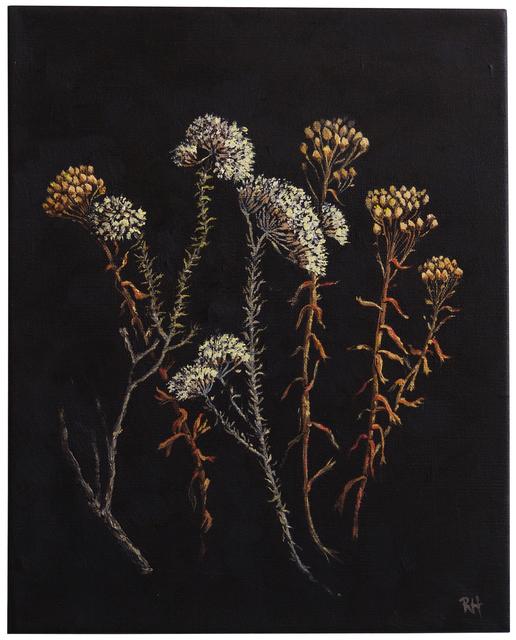 """, 'Selago , """"Bitter bush"""", aarbossie & strawflower,' 2017, Absolut Art Gallery"""