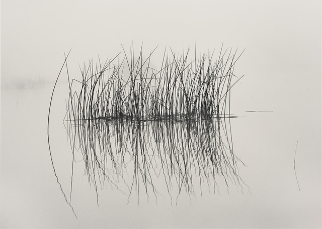 , 'Tule Raft,' 1997, The Ansel Adams Gallery