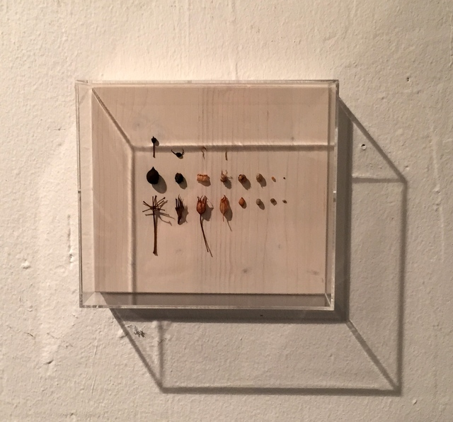 , 'Neuordnung VIII,' 2015, Galerie SOON
