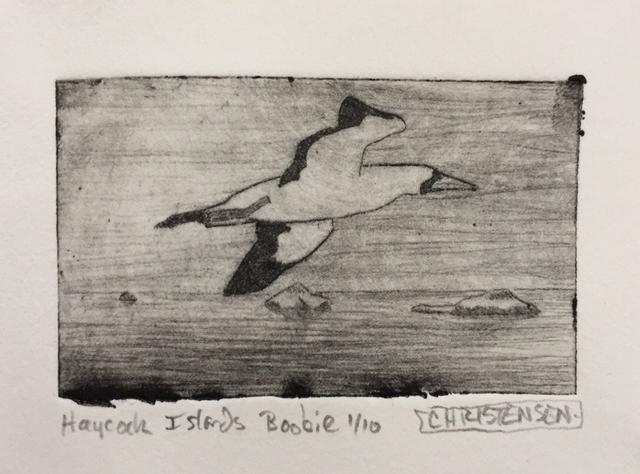 , 'Haycock Islands, Boobie,' 2019, Greenhut Galleries