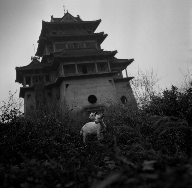 Tian Ye, 'Kaifeng', 2000, Pan-View Gallery