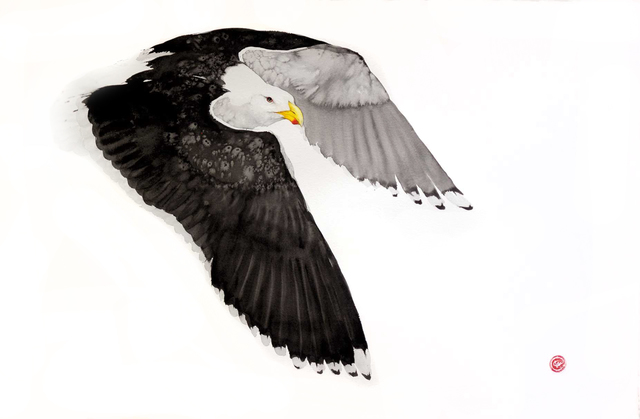 , 'Great Black Backed Gull,' , Cricket Fine Art