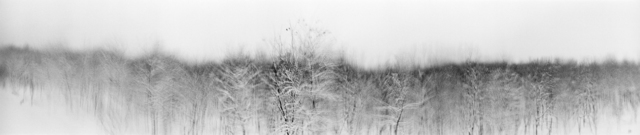 , 'Birds in Snow, Yellow River,' 2009, Aki Gallery
