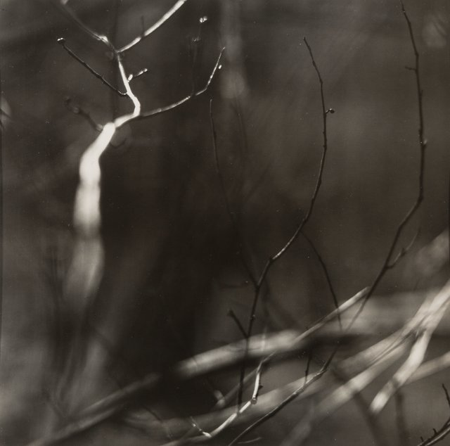 Ralph Eugene Meatyard, 'Untitled from the series Zen Twigs', circa 1960, Heritage Auctions