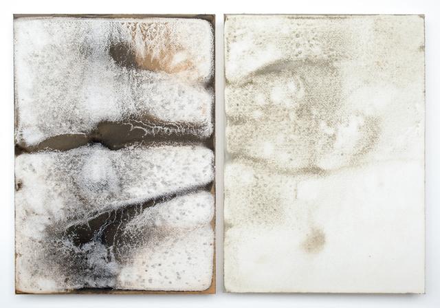 Shinji Turner-Yamamoto, 'Sidereal Silence: Irish Study #36 (diptych)', 2015, Sapar Contemporary