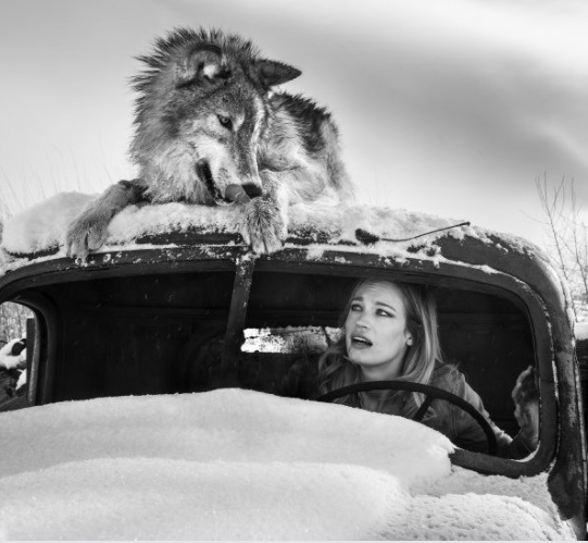 David Yarrow, 'A Street Car Named Desire 3', 2018, Photography, 315gsm Hahnemuhle Photo Rag Baryta Paper, Isabella Garrucho Fine Art