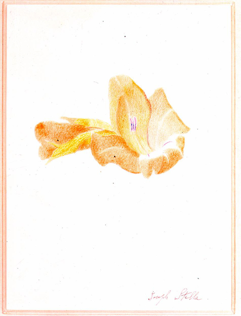 Joseph Stella, 'Orange Gladiola', ca. 1915, Gerald Peters Gallery