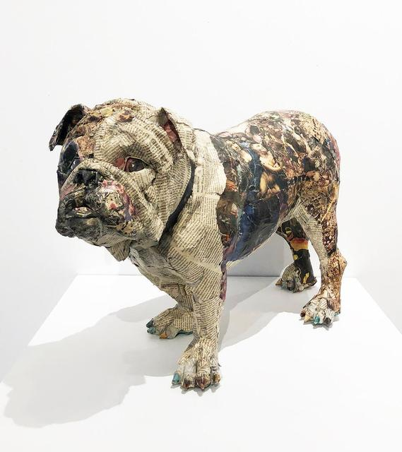 Will Kurtz, 'Bulldog', 2014, Clark Gallery