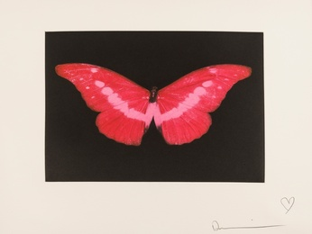 To Lose (Red Butterfly)