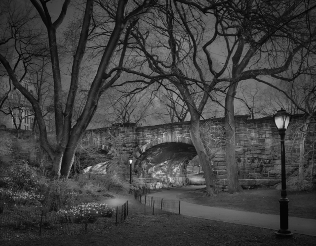 ", 'Deep In A Dream - Central Park - Central Park ""West Side Sunrise"",' 2009, Holden Luntz Gallery"