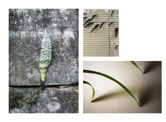 , 'untitled,' 2016, Galeria Nara Roesler