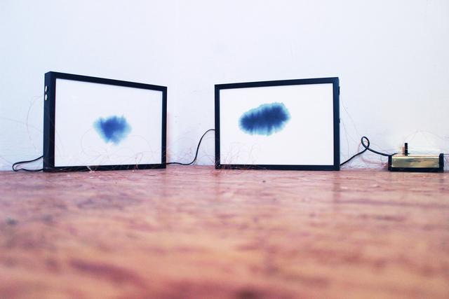 , 'Sonoides 3+4,' 2016, Spotte Art