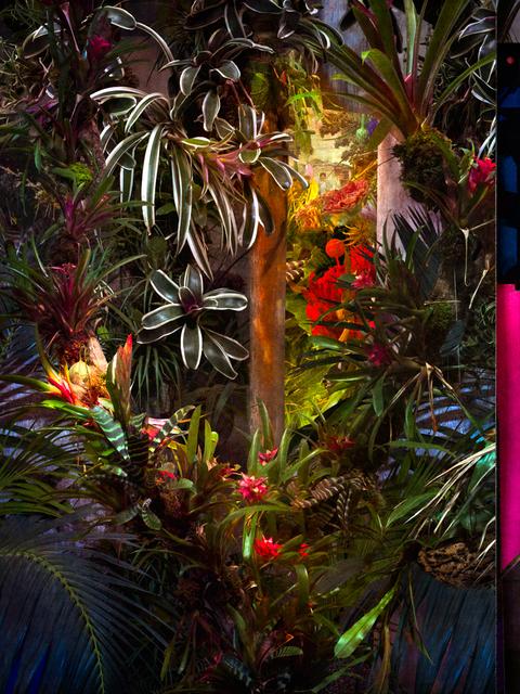 Cooper & Gorfer, 'Picture of a Garden', 2018, Photography, Archival pigment print, Larsen Warner