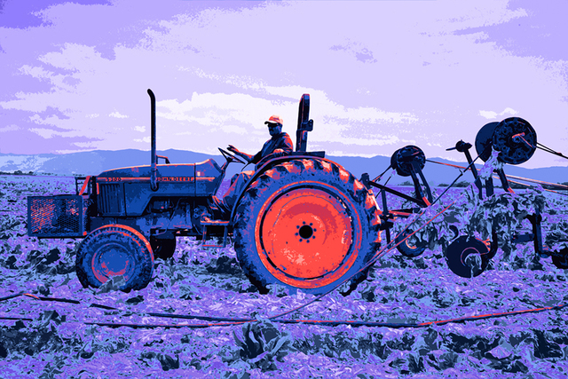 , 'Tractor Man,' , Winfield Gallery