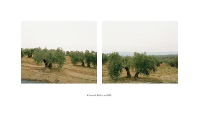 , 'Campos de Bailén, año 1808 (Serie Campos de batalla. España 1994-1996),' 1999, espaivisor - Galería Visor