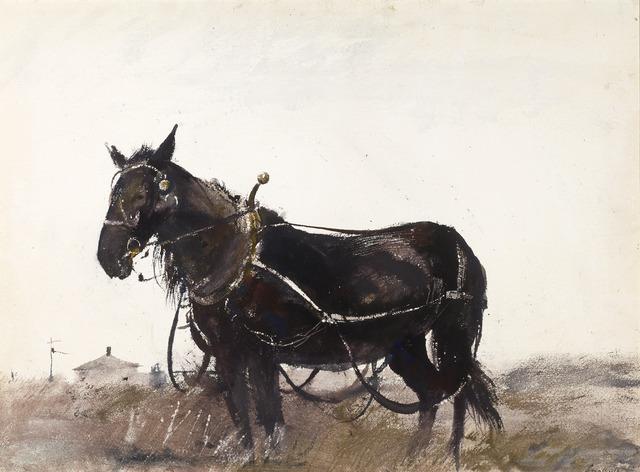 Andrew Wyeth, 'Farm Horse', 1954,  M.S. Rau