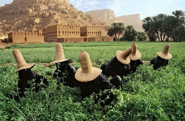 , 'Clover Gatherers, Wadi Hadhramaut, Yemen,' 1999, Etherton Gallery
