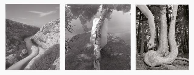 Arno Rafael Minkkinen, 'The Roots of the River I', 2008, Light Work