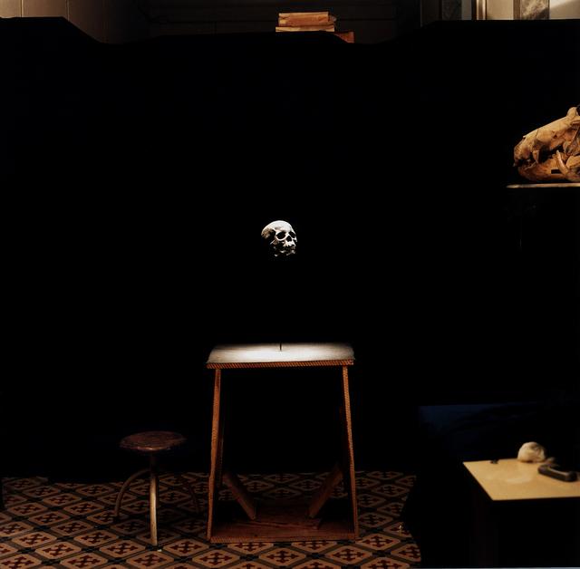, 'Macrocephaly,' 2007, Sies + Höke