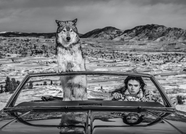 David Yarrow, 'The Richest Hill in the World', 2020, Photography, Digital Pigment Print on Archival 315gsm Hahnemuhle Photo Rag Baryta Paper, Isabella Garrucho Fine Art