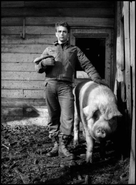 , 'James Dean. Fairmount, Indiana,' 1955, Danziger Gallery